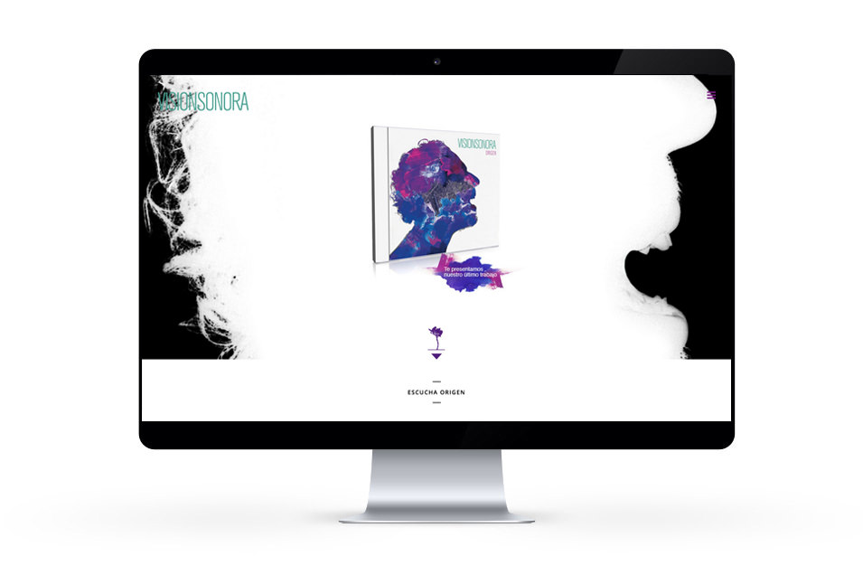 web vision sonora